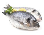 Jodhaltiger Fisch